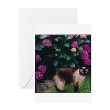 Cute Feline Greeting Card