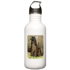 Afghan Hound 9P032D-201 Sports Water Bottle