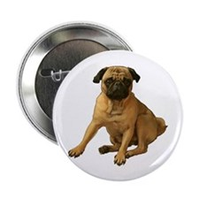 "Pug 2 2.25"" Button (10 pack)"