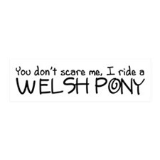 Welsh Pony Wall Decal