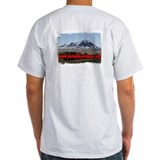 Defend Bear Butte Ash Grey T-Shirt