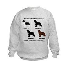 4 Newfoundlands Sweatshirt