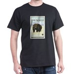 National Parks - Denali Dark T-Shirt