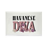 Havanese DIVA Rectangle Magnet (100 pack)