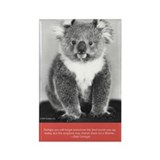 """Vintage Postcards"" Book Koala Rectangle Magnet"