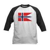 Norway State Flag Tee
