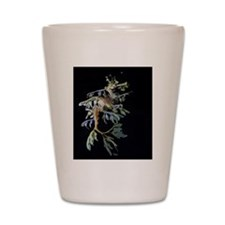 Leafy Seadragon with Mysid Shot Glass