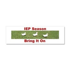 Ducks In A Row Car Magnet 10 x 3