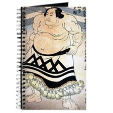 Raiden sumo Journal