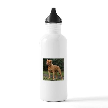 Dogue de Bordeaux 9Y201D-193 Stainless Water Bottl
