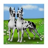 HARLEQUIN GREAT DANE DOGS Tile Coaster