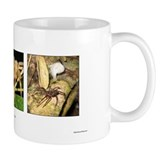 Amazon Spiders - Mug