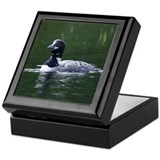 Maine Loon Keepsake Box