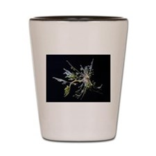Leafy Flies Shot Glass
