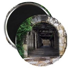 "Alamo Walk 2.25"" Magnet (100 pack)"