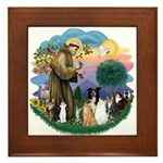 StFrancis2 / Framed Tile
