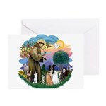 StFrancis2 / Greeting Cards (Pk of 10)