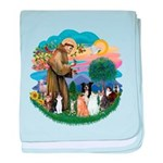 StFrancis2 / baby blanket