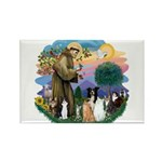StFrancis2 / Rectangle Magnet (100 pack)