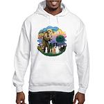 StFrancis2 / Hooded Sweatshirt