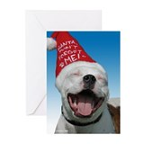 Pit Bull JOY Greeting Cards (Pk of 10)