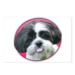 Funny Shih Tzu Postcards (Package of 8)