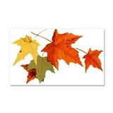 Autumn Colors Car Magnet 20 x 12