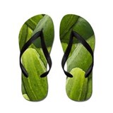 Pickles Flip Flops