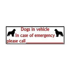 In Case of Emergency - Car Magnet 10 x 3