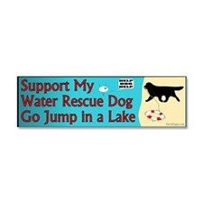 Go Jump in a Lake Car Magnet 10 x 3
