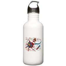 Neuron cell Water Bottle