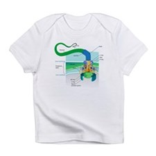 Morphology Infant T-Shirt