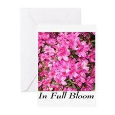 Cute Boutique style Greeting Cards (Pk of 10)