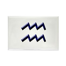 Aquarius Blue Rectangle Magnet
