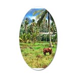 Horse in a Tropical Pasture 22x14 Oval Wall Peel