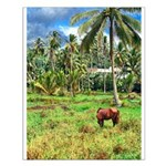Horse in a Tropical Pasture Small Poster