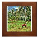 Horse in a Tropical Pasture Framed Tile