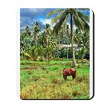 Horse in a Tropical Pasture Mousepad