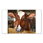 Cow 1 Sticker (Rectangle 50 pk)
