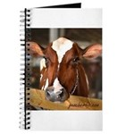 Cow 1 Journal