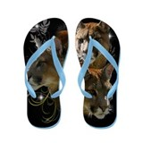 Unique Large cats Flip Flops