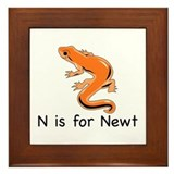 N is for Newt Framed Tile
