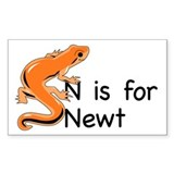 N is for Newt Rectangle Decal