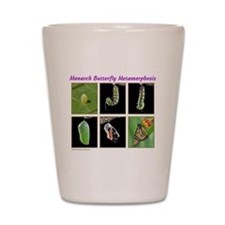 Monarch Metamorphosis Shot Glass