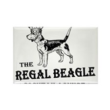 The Regal Beagle Rectangle Magnet (10 pack)