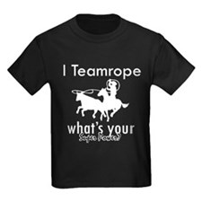 I Teamrope T