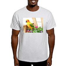 Sun Conure Ash Grey T-Shirt