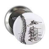 "spine 2.25"" Button (100 pack)"