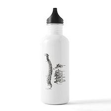 spine Sports Water Bottle