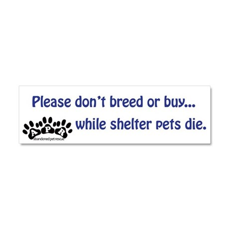 Shelter Pets Car Magnet 10 x 3
